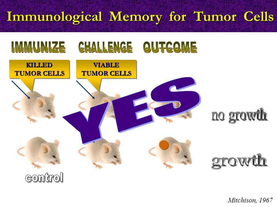 Τρόποι διαφυγής των καρκινικών κυττάρων από την ανοσοεπιτήρηση