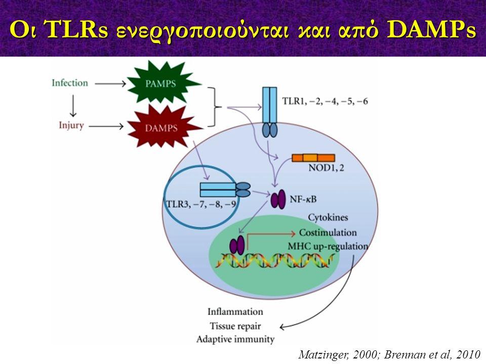 Matzinger, 2000; Brennan et al, 2010 Οι TLRs ενεργοποιούνται και από DAMPs
