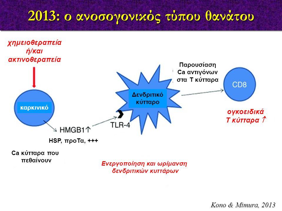 2013: ο ανοσογονικός τύπου θανάτου Kono & Mimura, 2013 χημειοθεραπεία ή/και ακτινοθεραπεία Ca κύτταρα που πεθαίνουν Ενεργοποίηση και ωρίμανση δενδριτικών κυττάρων Παρουσίαση Ca αντιγόνων στα Τ κύτταρα ογκοειδικά Τ κύτταρα  καρκινικό Δενδριτικό κύτταρο HSP, προΤα, +++