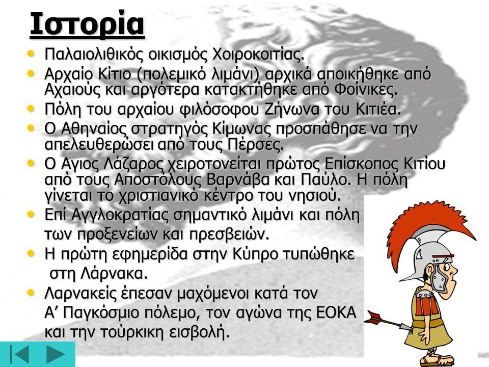 Ιστορία Παλαιολιθικός οικισμός Χοιροκοιτίας.Παλαιολιθικός οικισμός Χοιροκοιτίας.