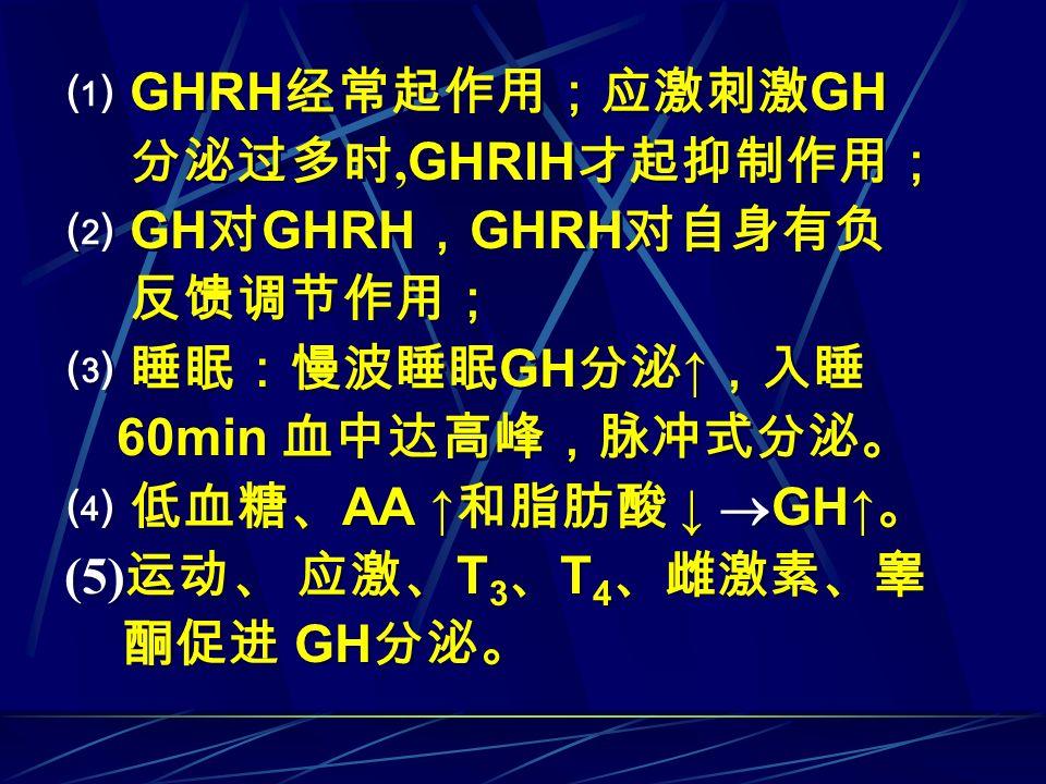 ⑴ GHRH 经常起作用;应激刺激 GH 分泌过多时, GHRIH 才起抑制作用; ⑵ GH 对 GHRH , GHRH 对自身有负 反馈调节作用; ⑶ 睡眠:慢波睡眠 GH 分泌 ↑ ,入睡 60min 血中达高峰,脉冲式分泌。 ⑷ 低血糖、 AA ↑ 和脂肪酸 ↓  GH↑ 。 (5) 运动、