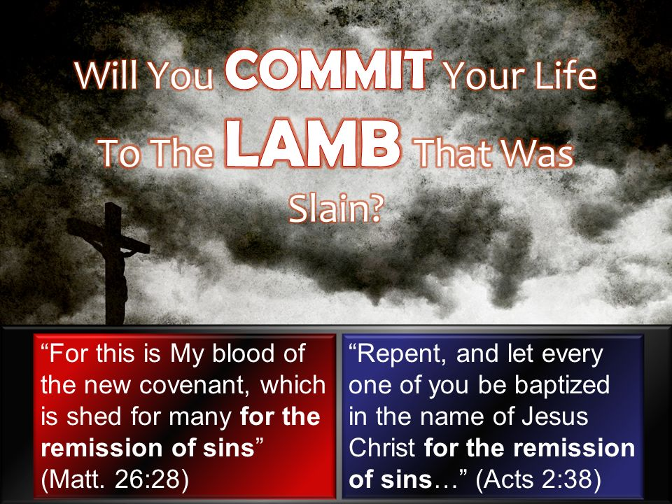 For this is My blood of the new covenant, which is shed for many for the remission of sins (Matt.