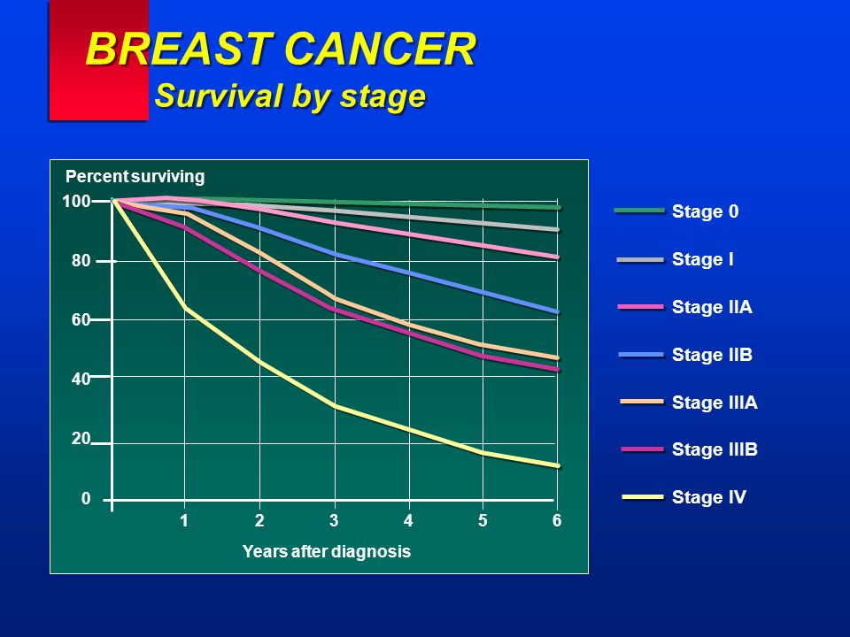 BREAST CANCER Survival by stage Stage 0 Stage I Stage IIA Stage IIB Stage IIIA Stage IIIB Stage IV Percent surviving 100 80 60 40 20 0 123456123456 Ye