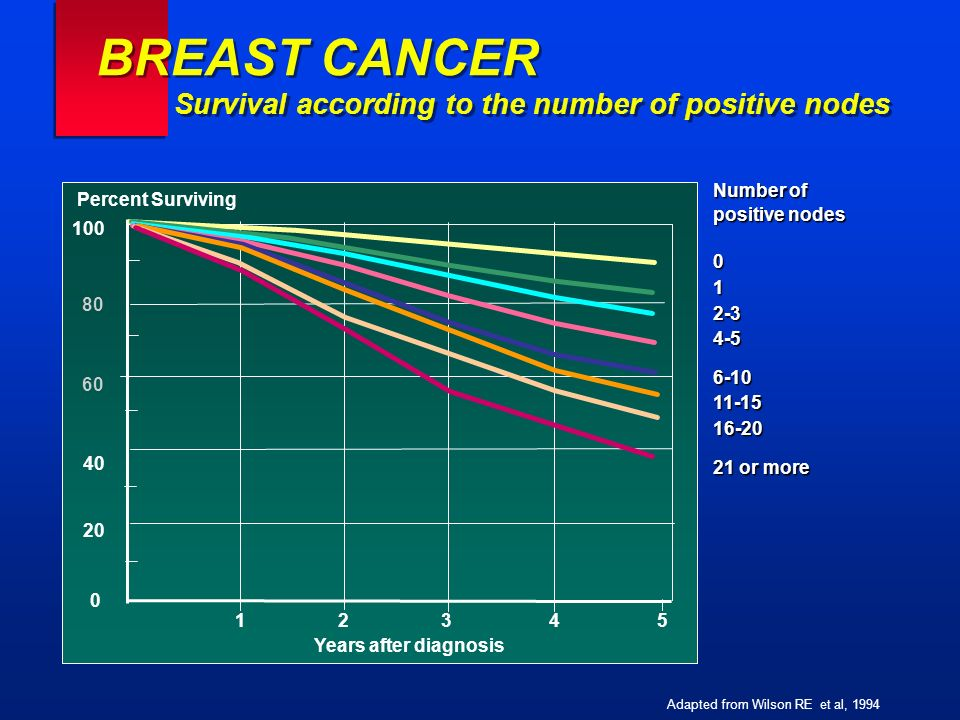 BREAST CANCER Survival according to the number of positive nodes Number of positive nodes 012-34-56-1011-1516-20 21 or more Adapted from Wilson RE et