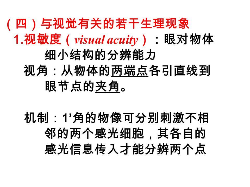 (四)与视觉有关的若干生理现象 1.