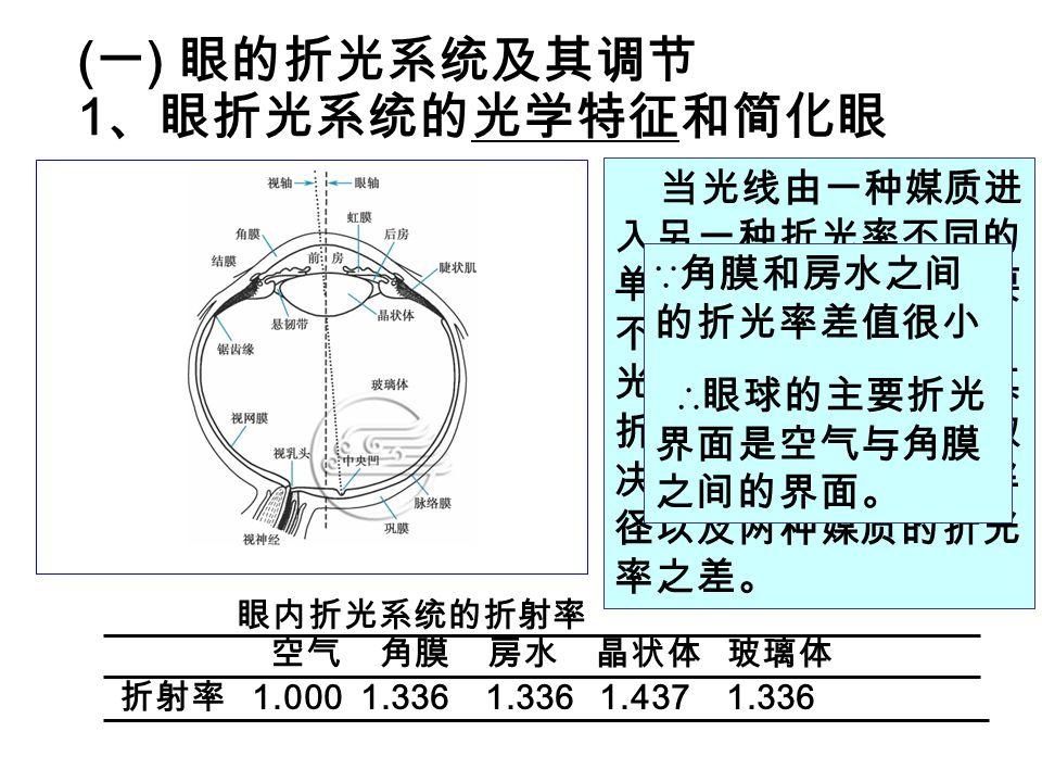 ( 1 )近视 (myopia) 由于眼球的前后径过长(轴性近视)或折光系统的 折光能力过强(屈光性近视) → 远处物体发出的平行 光线被聚焦在视网膜前方,因而在视网膜上形成模糊 的图像。 近视眼的近点和远点都移近。 矫正:配戴适宜 ??.