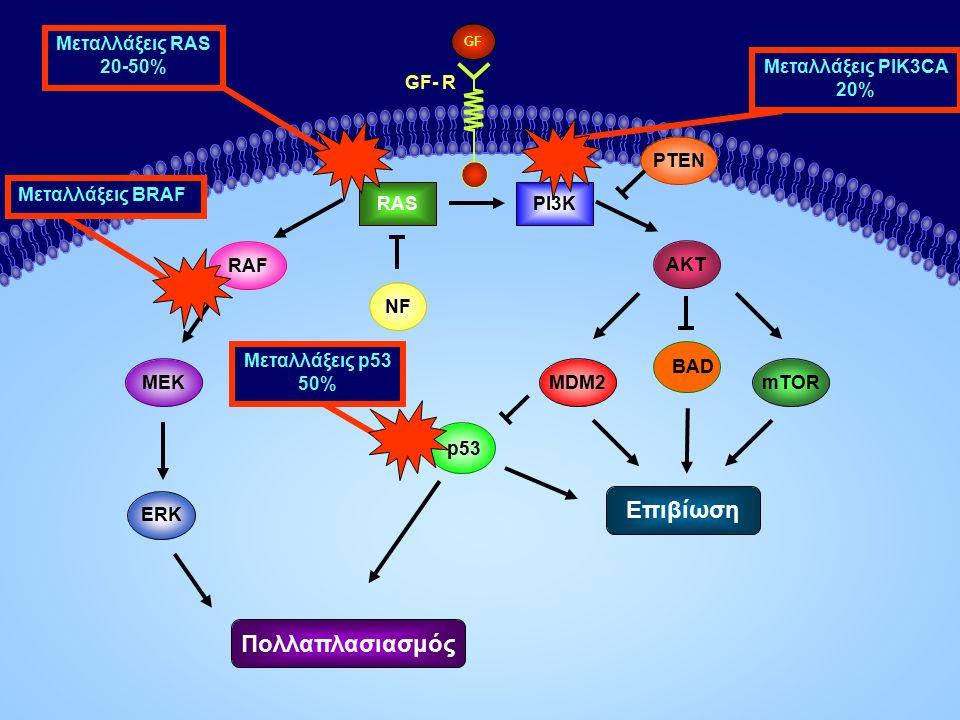 AKT PI3K MEKMDM2 p53 RAS ERK mTOR PTEN Επιβίωση GF- R NF RAF GF Πολλαπλασιασμός Μεταλλάξεις RAS 20-50% Μεταλλάξεις PIK3CA 20% BAD Μεταλλάξεις BRAF Μεταλλάξεις p53 50%