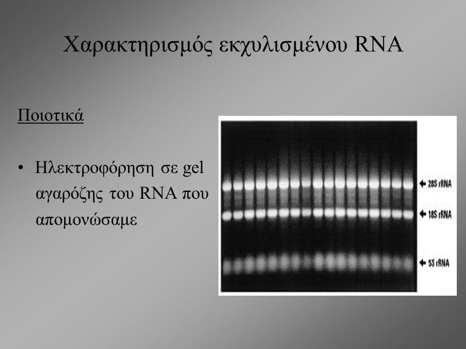 Χαρακτηρισμός εκχυλισμένου DNA Ποιοτικά Ηλεκτροφόρηση σε gel αγαρόζης του DNA που απομονώσαμε