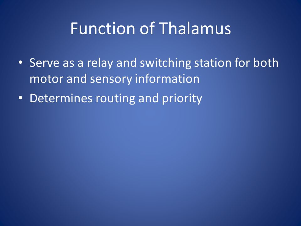 Function of Thalamus Serve as a relay and switching station for both motor and sensory information Determines routing and priority