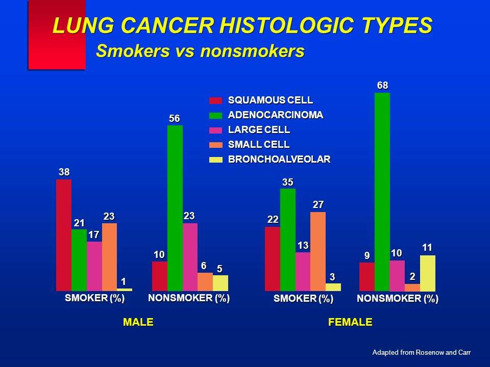 LUNG CANCER HISTOLOGIC TYPES Smokers vs nonsmokers SQUAMOUS CELL ADENOCARCINOMA LARGE CELL SMALL CELL BRONCHOALVEOLAR Adapted from Rosenow and Carr SM