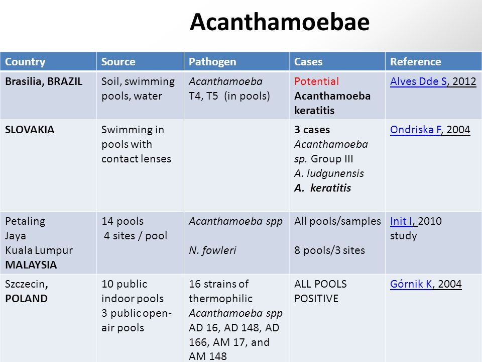 Acanthamoebae CountrySourcePathogenCasesReference Brasilia, BRAZILSoil, swimming pools, water Acanthamoeba T4, T5 (in pools) Potential Acanthamoeba keratitis Alves Dde SAlves Dde S, 2012 SLOVAKIASwimming in pools with contact lenses 3 cases Acanthamoeba sp.