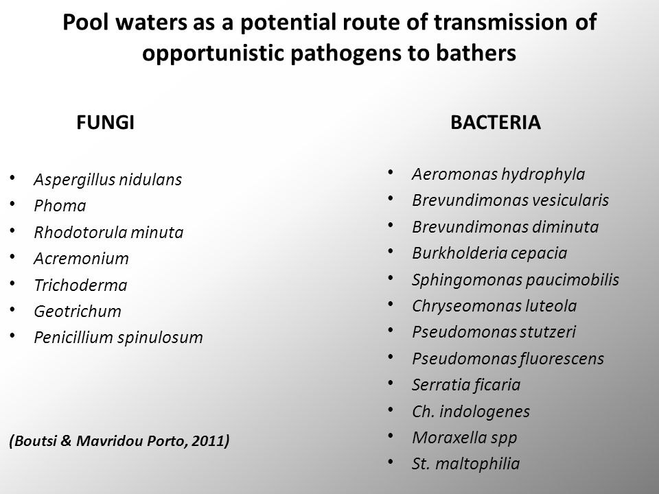 Pool waters as a potential route of transmission of opportunistic pathogens to bathers FUNGI Aspergillus nidulans Phoma Rhodotorula minuta Acremonium