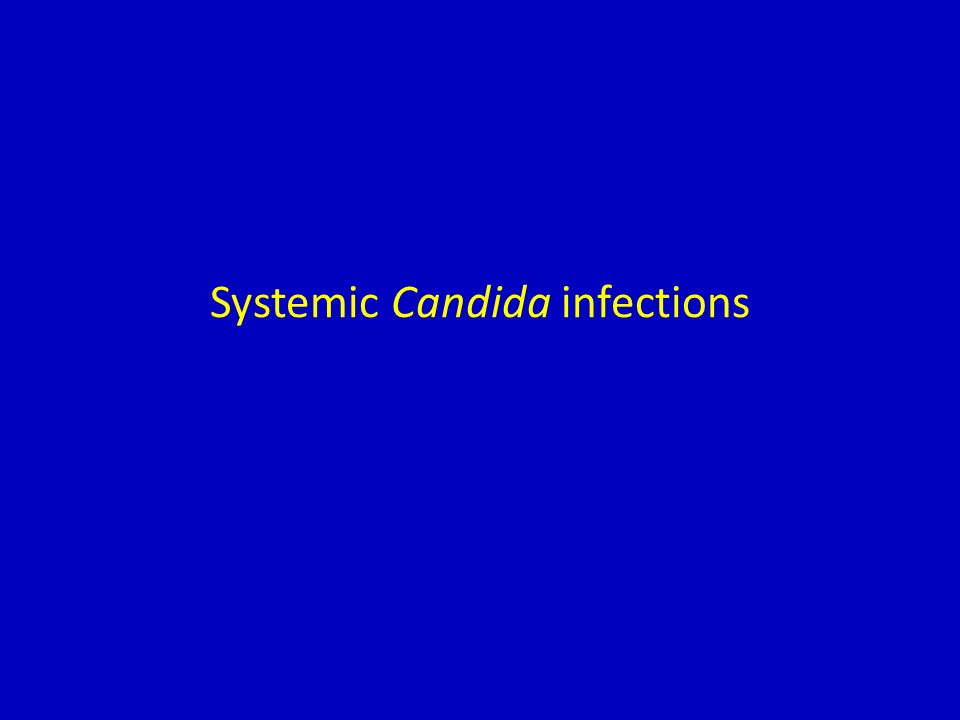 Systemic Candida infections