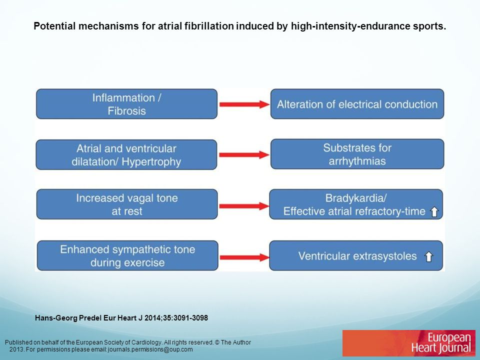 Potential mechanisms for atrial fibrillation induced by high-intensity-endurance sports. Hans-Georg Predel Eur Heart J 2014;35:3091-3098 Published on