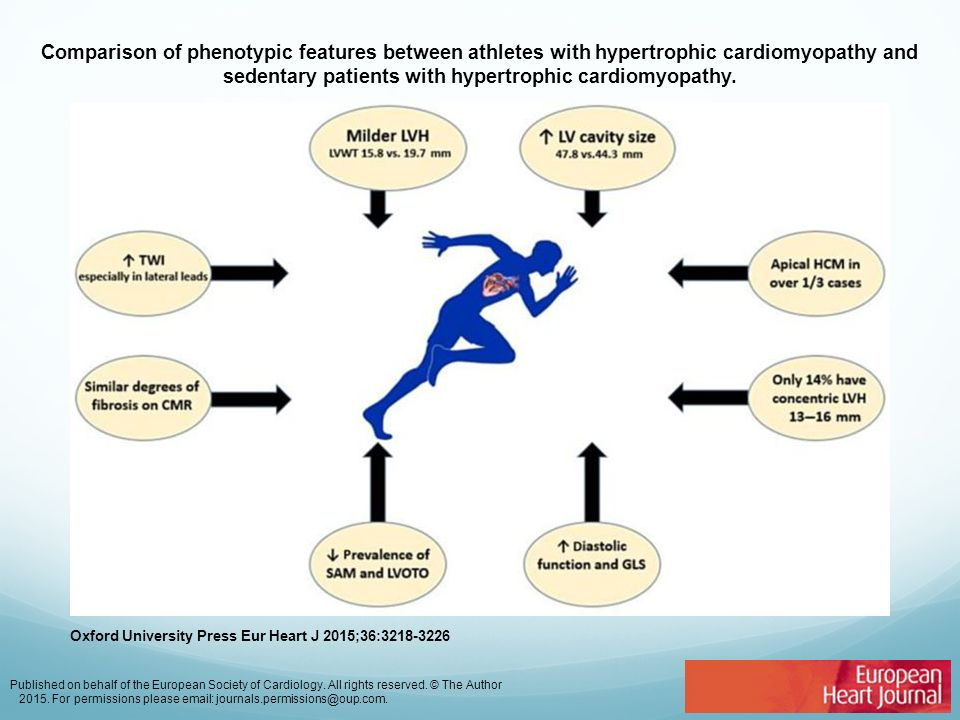 Comparison of phenotypic features between athletes with hypertrophic cardiomyopathy and sedentary patients with hypertrophic cardiomyopathy.
