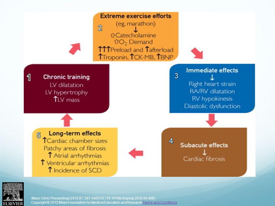 FIGURE 7 Mayo Clinic Proceedings 2012 87, 587-595DOI: (10.1016/j.mayocp.2012.04.005) Copyright © 2012 Mayo Foundation for Medical Education and Resear