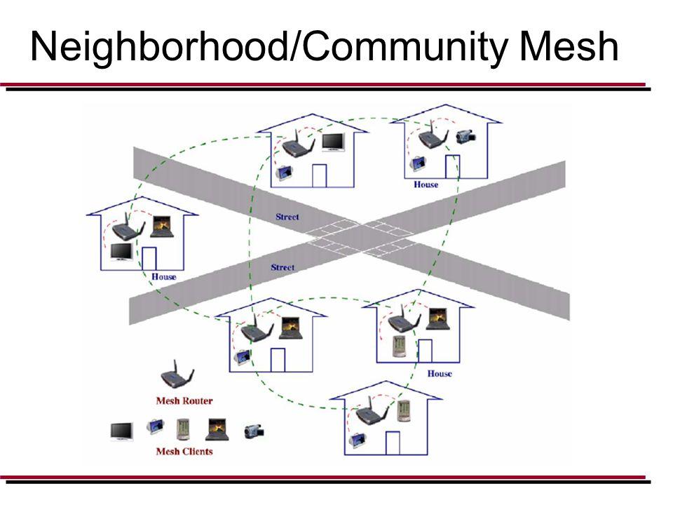 Neighborhood/Community Mesh