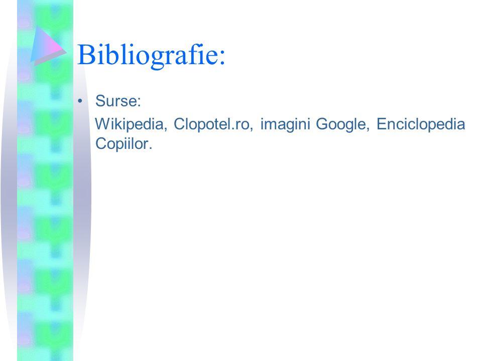 Bibliografie: Surse: Wikipedia, Clopotel.ro, imagini Google, Enciclopedia Copiilor.