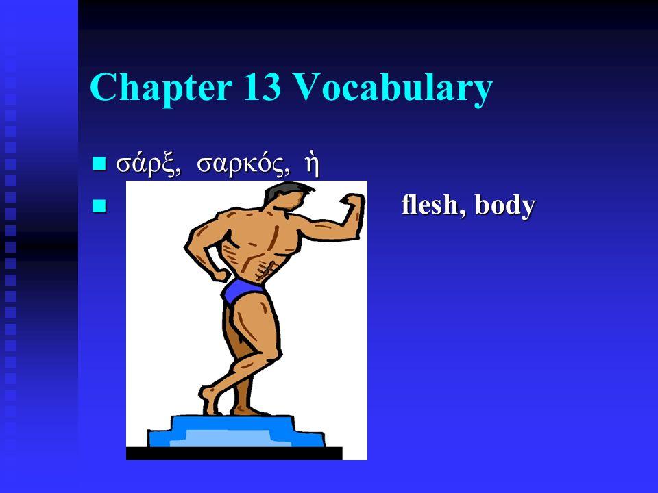Chapter 13 Vocabulary σάρξ, σαρκός, ἡ σάρξ, σαρκός, ἡ flesh, body flesh, body