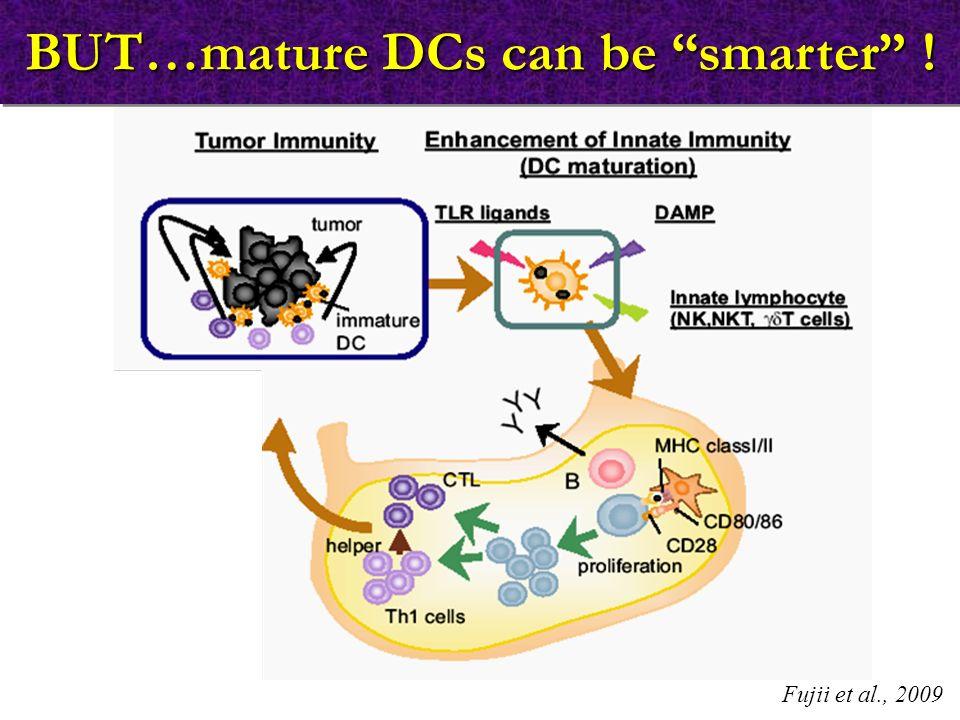 """BUT…mature DCs can be """"smarter"""" ! Fujii et al., 2009"""