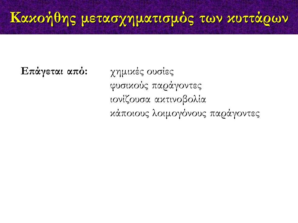 Προφυλακτικά Θεραπευτικά  Sipuleucel-T, ProstVac (prostate cancer)  Oncophage (kidney cancer, metastatic melanoma, glioma) melanoma, glioma)  OncoVEX (melanoma, head & neck cancer)  mAbs (Herceptin, Rituxan, Mylotarg, etc)  CimaVax-EGF (lung); Neuvenge (breast, bladder, colon, ovarian); NeuVax (HER/neu tumors); BiovaxID ovarian); NeuVax (HER/neu tumors); BiovaxID (follicular lymphoma); ADXS31 (renal, colon); (follicular lymphoma); ADXS31 (renal, colon); SCIB1(melanoma) SCIB1(melanoma)  HPV vaccine (h.
