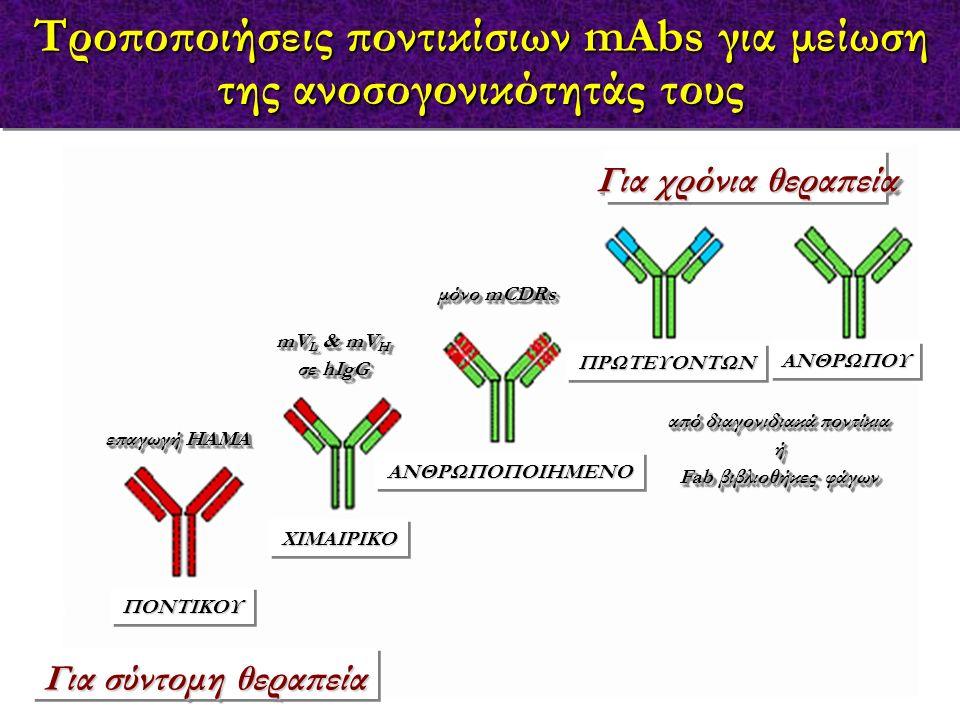Τροποποιήσεις ποντικίσιων mAbs για μείωση της ανοσογονικότητάς τους επαγωγή HAMA mV L & mV H σε hIgG mV L & mV H σε hIgG μόνο mCDRs από διαγονιδιακά π