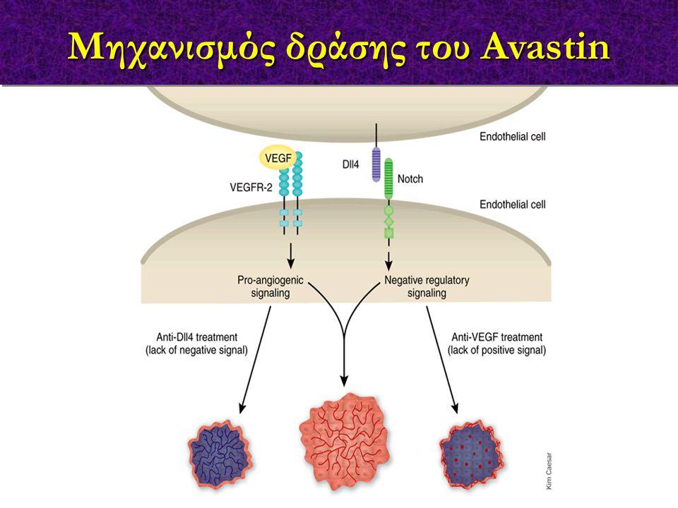 Μηχανισμός δράσης του Avastin