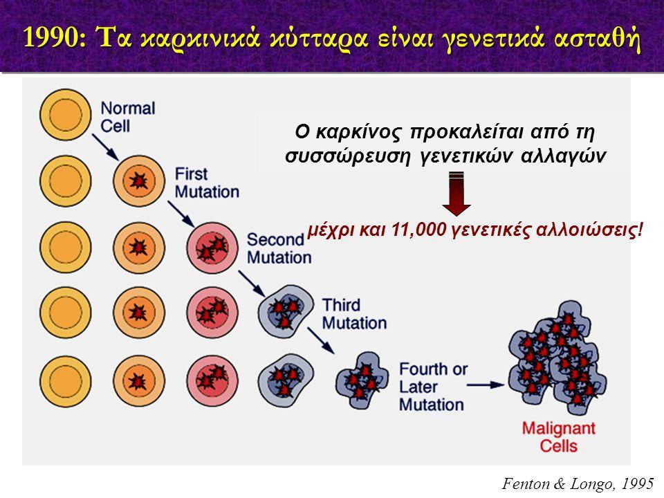 1990: Τα καρκινικά κύτταρα είναι γενετικά ασταθή μέχρι και 11,000 γενετικές αλλοιώσεις! Fenton & Longo, 1995 Ο καρκίνος προκαλείται από τη συσσώρευση
