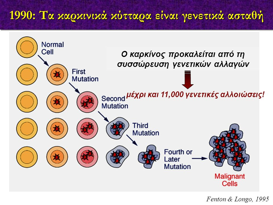 Anti-PD1/Anti-PD-L1: T cell & Tu cell brakes T cell Tu cell Nivolumab (BMS) Pembrolizumab (Merck) Pidilizumab (CureTech) MDX-1105(BMS) MPDL3280A (Roche) MEDI4736 (AstraZeneca) Nivolumab (IgG4): 1 st mAb with OR of 20-25% vs 10-15% of previous immune approaches Pidilizumab: IgG1, humanized,  NK activity, 0% pneumonitis MDX-1105: IgG4, pneumonitis MPDL3280A (IgG1): 0% pneumonitis MEDI4736 (IgG1): modified in Fc, no ADCC, no CDCC, no adverse effects in NSCLC Padroll et al., 2012