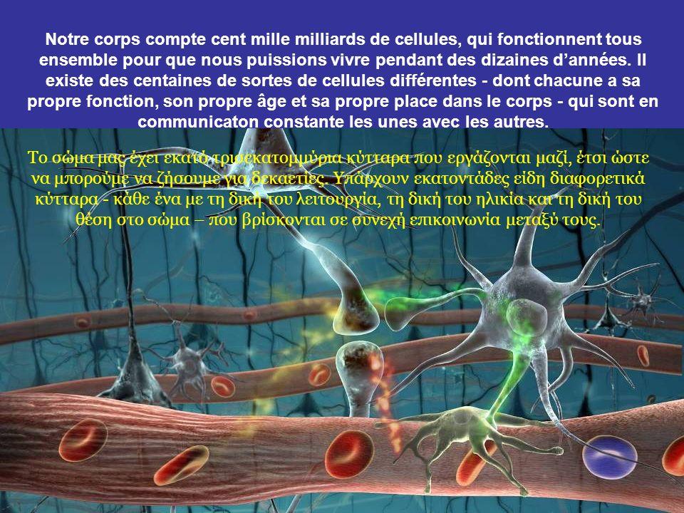 Passons maintenant du macrocosme au microcosme : Ας περάσουμε τώρα από τον μακρόκοσμο στον μικρόκοσμο :