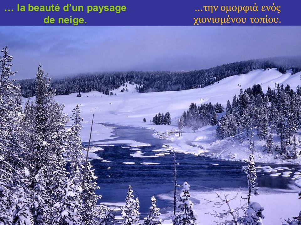 …de la symétrie dun cristal de neige jusquà … …από τη συμμετρία ενός κρυστάλλου χιονονιφάδας, ως...