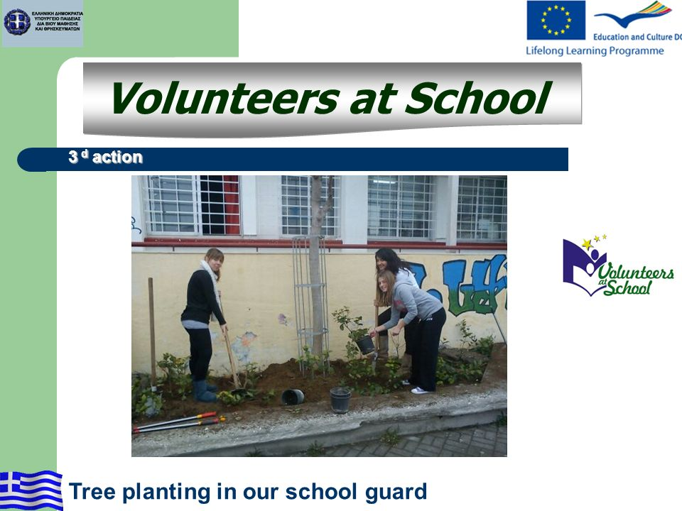 Volunteers at School 3 d action Tree planting in our school guard