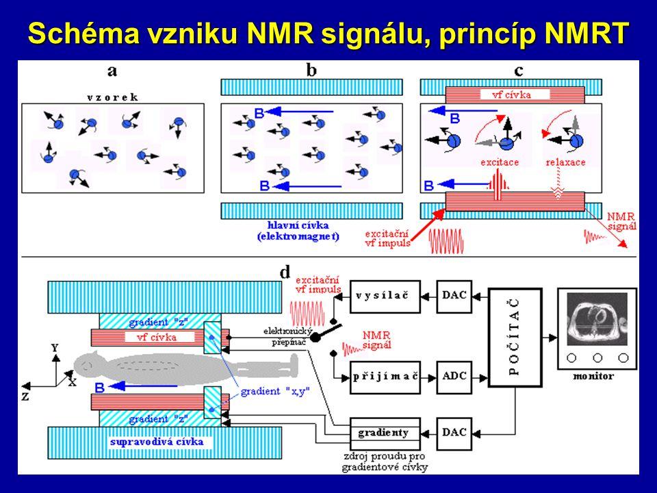 Schéma vzniku NMR signálu, princíp NMRT