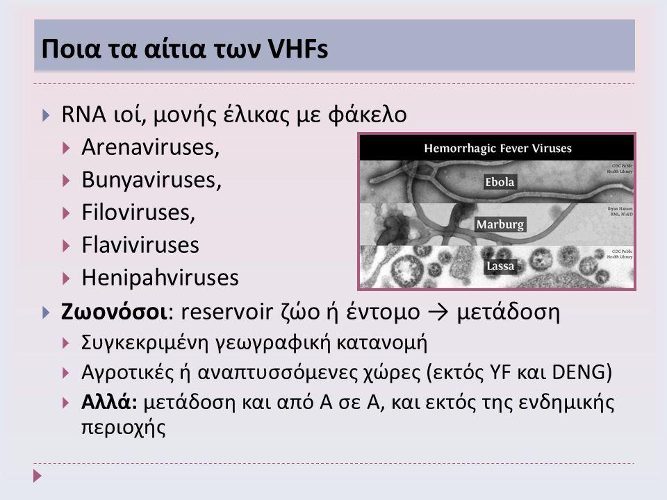 Ποια τα αίτια των VHFs  RNA ιοί, μονής έλικας με φάκελο  Arenaviruses,  Bunyaviruses,  Filoviruses,  Flaviviruses  Henipahviruses  Ζωονόσοι: reservoir ζώο ή έντομο → μετάδοση  Συγκεκριμένη γεωγραφική κατανομή  Αγροτικές ή αναπτυσσόμενες χώρες (εκτός YF και DENG)  Αλλά: μετάδοση και από Α σε Α, και εκτός της ενδημικής περιοχής