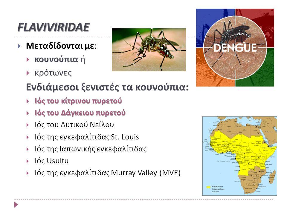 FLAVIVIRIDAE  Μεταδίδονται με:  κουνούπια ή  κρότωνες Ενδιάμεσοι ξενιστές τα κουνούπια:  Ιός του κίτρινου πυρετού  Ιός του Δάγκειου πυρετού  Ιός του Δυτικού Νείλου  Ιός της εγκεφαλίτιδας St.