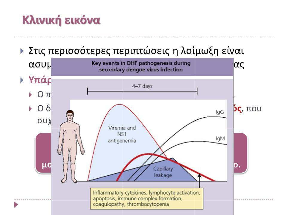 Κλινική εικόνα  Στις περισσότερες περιπτώσεις η λοίμωξη είναι ασυμπτωματική ή ελαφράς συμπτωματολογίας  Υπάρχουν δυο κλινικές μορφές:  O πρωτοπαθής κλασσικός δάγγειος πυρετός και  Ο δευτεροπαθής δάγγειος αιμορραγικός πυρετός, που συχνά οδηγεί σε σύνδρομο καταπληξίας (shock).