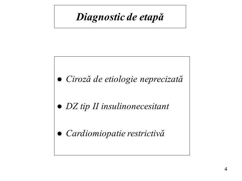 Markeri virali hepatici: −AgHBs = Negativ −AcAntiVHC = Negativ Cupremia,Cupruria: limite N Explorarea metabolismului fierului −Sideremie = 223µg/dl ( N:50-150 µg/dl ) −CTLF = 234µg/dl ( N:250-370µg/dl ) −CS = 95% ( N:22-46% ) −Feritina=2500 µg/dl ( N:10-200µg/dl ) IRM abdomen: −ficat global mărit −intens hiposemnal T1/T2, −aspect de încărcare ferică Testare genetică: −HFE-C282Y: mutaţii prezente −Homozigot pt mutaţia C282Y 5