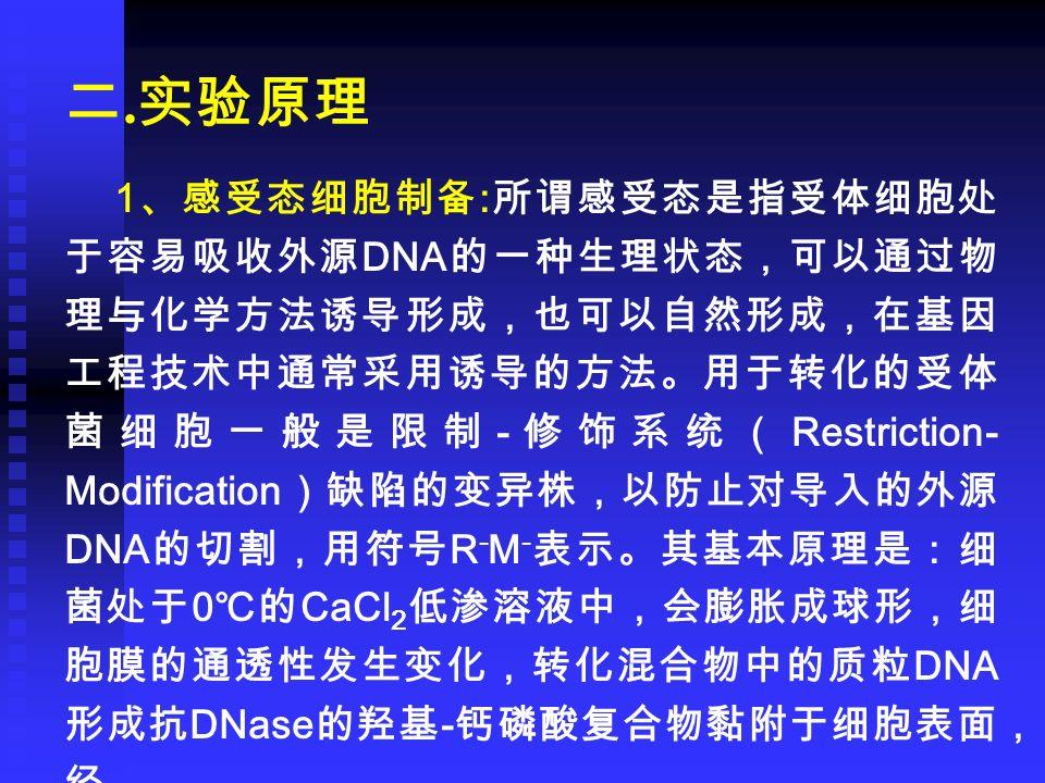二. 实验原理 1 、感受态细胞制备 : 所谓感受态是指受体细胞处 于容易吸收外源 DNA 的一种生理状态,可以通过物 理与化学方法诱导形成,也可以自然形成,在基因 工程技术中通常采用诱导的方法。用于转化的受体 菌细胞一般是限制 - 修饰系统( Restriction- Modification )
