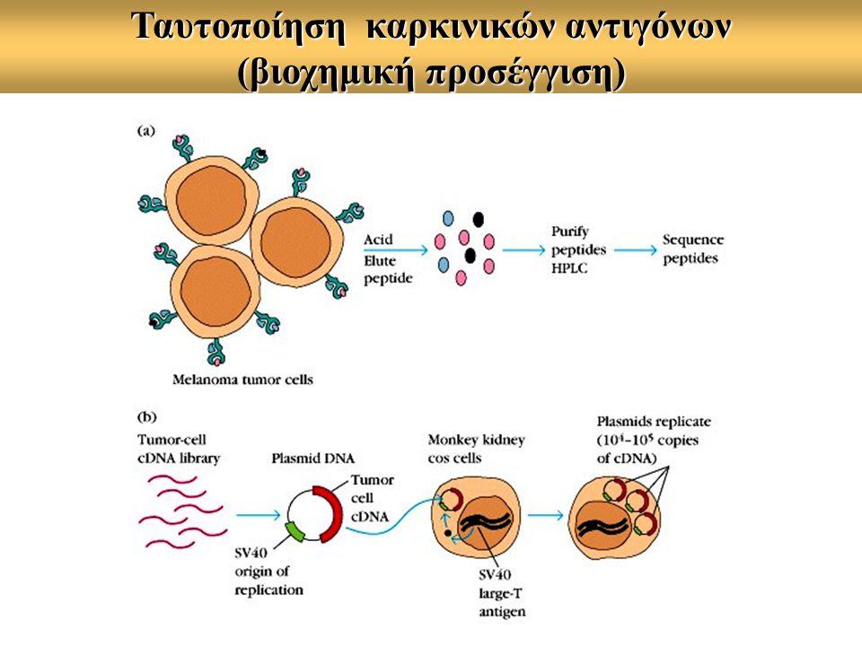 Ταυτοποίηση καρκινικών αντιγόνων (βιοχημική προσέγγιση)