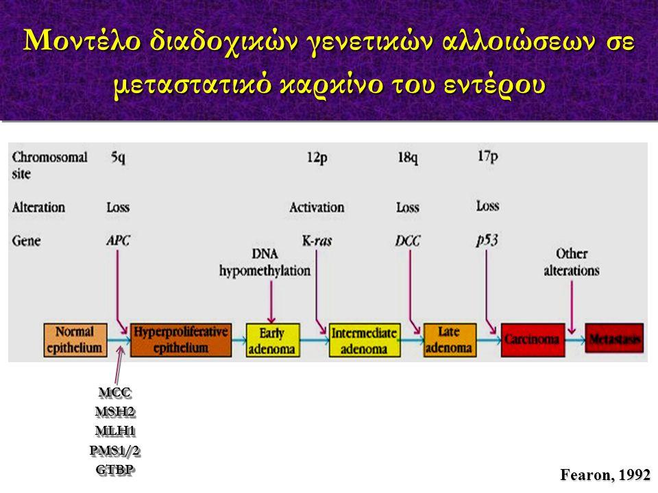Μοντέλο διαδοχικών γενετικών αλλοιώσεων σε μεταστατικό καρκίνο του εντέρου MCCMSH2MLH1PMS1/2GTBPMCCMSH2MLH1PMS1/2GTBP Fearon, 1992