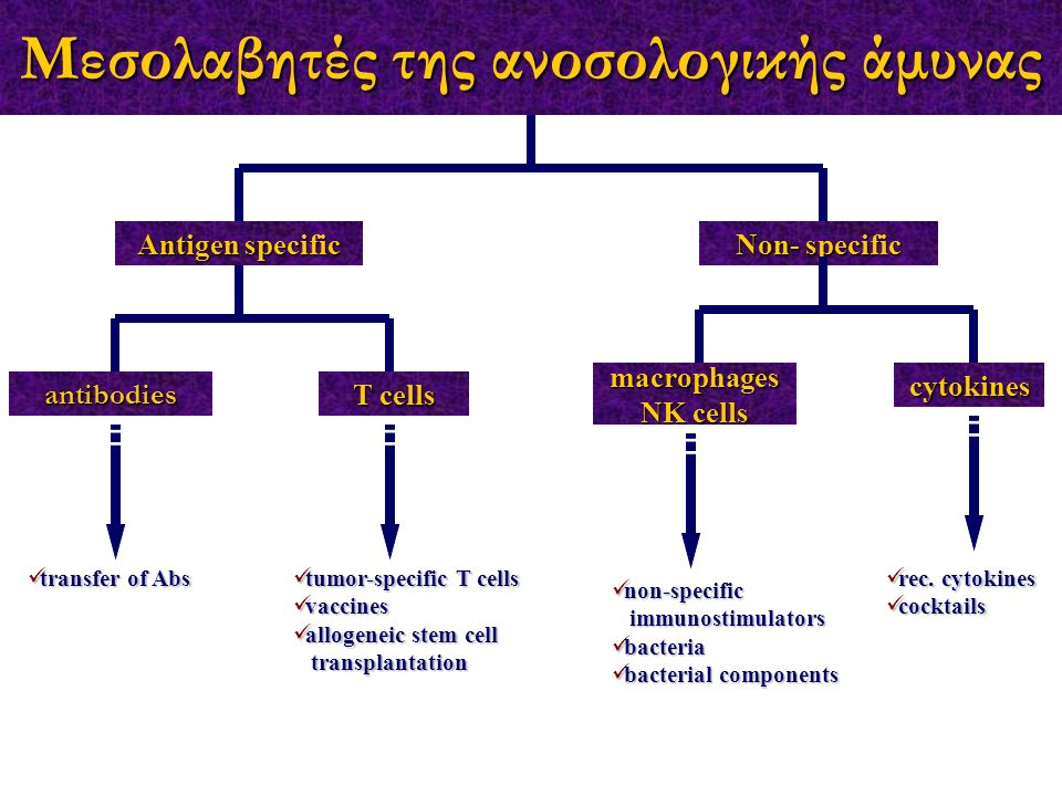 Μεσολαβητές της ανοσολογικής άμυνας Antigen specific Non- specific macrophages NK cells cytokines antibodies T cells rec.