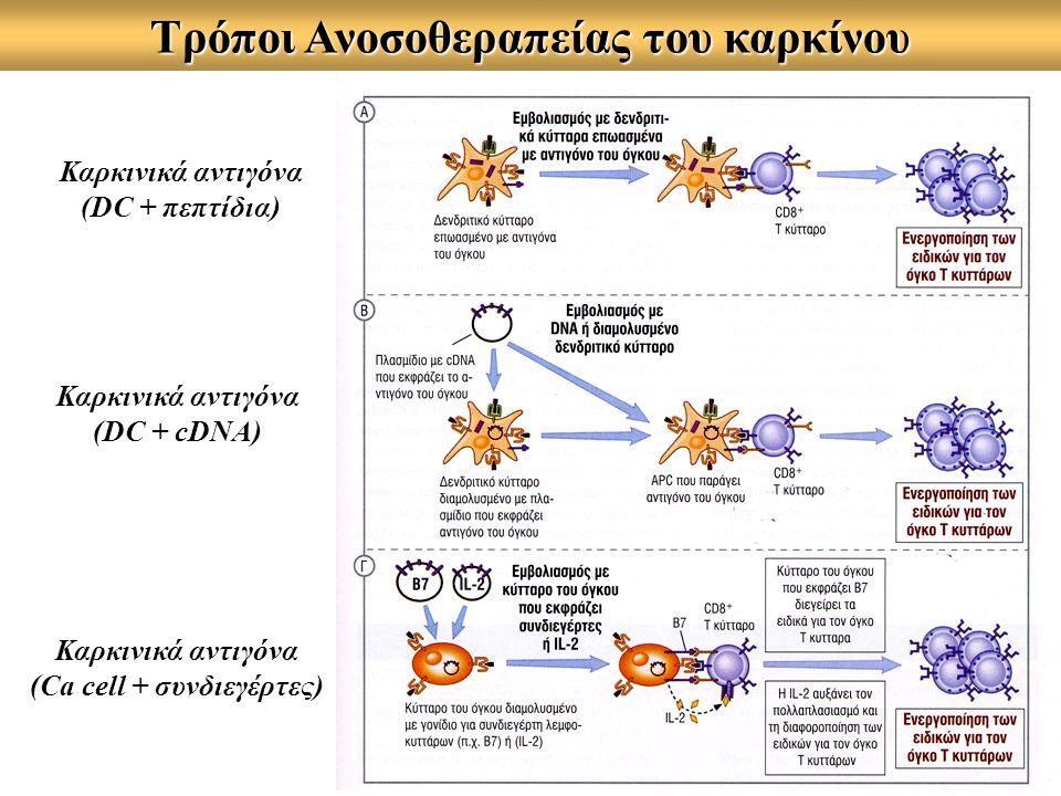 Τρόποι Ανοσοθεραπείας του καρκίνου Καρκινικά αντιγόνα (DC + πεπτίδια) Καρκινικά αντιγόνα (DC + cDNA) Καρκινικά αντιγόνα (Ca cell + συνδιεγέρτες)