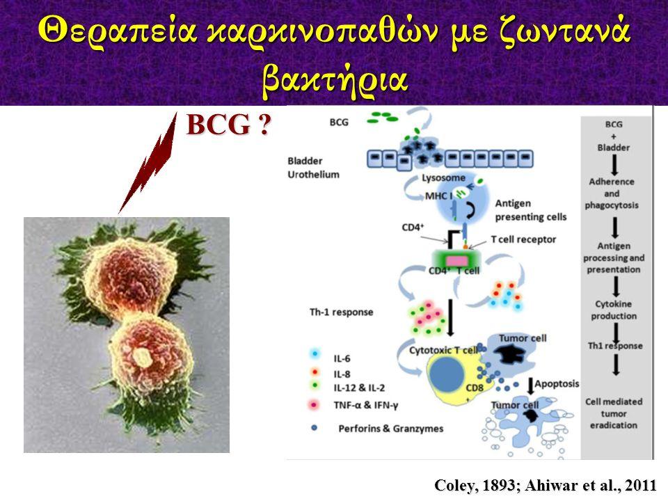 Θεραπεία καρκινοπαθών με ζωντανά βακτήρια Coley, 1893; Ahiwar et al., 2011 BCG