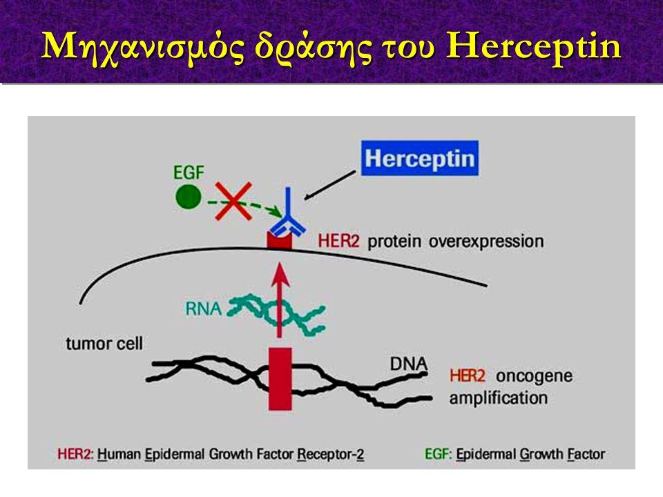 Μηχανισμός δράσης του Herceptin
