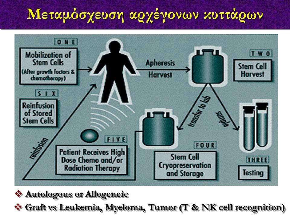 Μεταμόσχευση αρχέγονων κυττάρων  Autologous or Allogeneic  Graft vs Leukemia, Myeloma, Tumor (T & NK cell recognition)