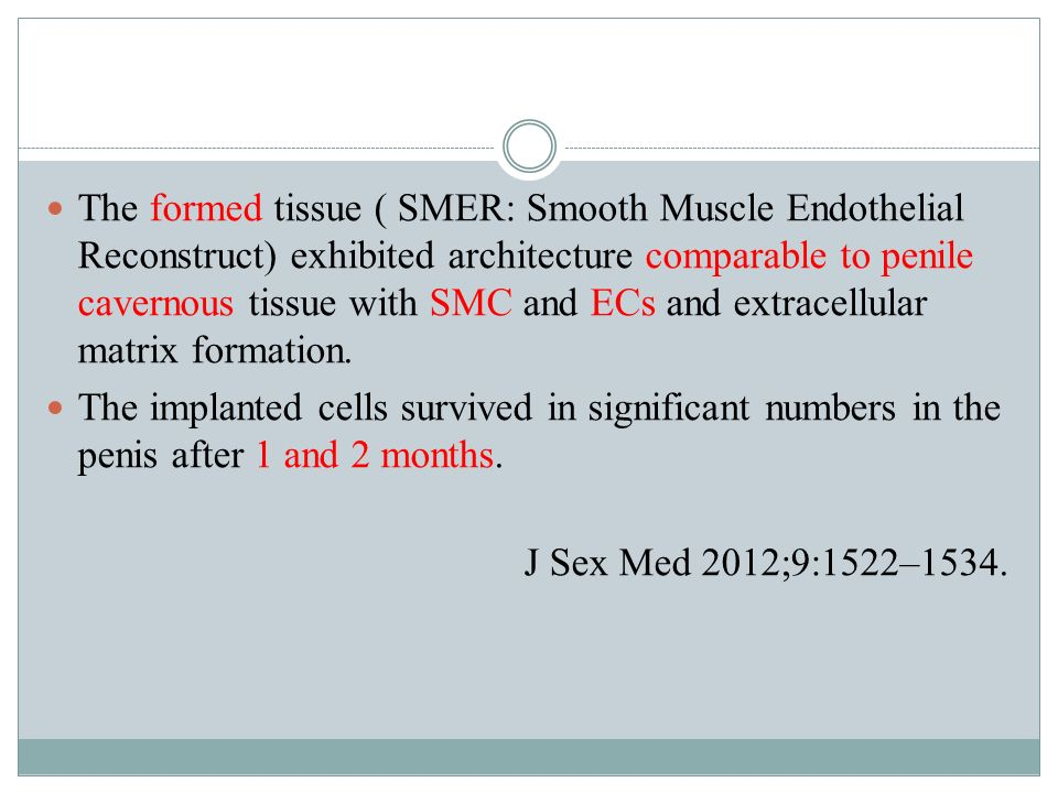 The formed tissue ( SMER: Smooth Muscle Endothelial Reconstruct) exhibited architecture comparable to penile cavernous tissue with SMC and ECs and extracellular matrix formation.