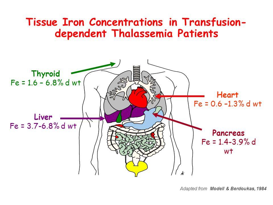 Liver Fe = 3.7-6.8% d wt Heart Fe = 0.6 –1.3% d wt Thyroid Fe = 1.6 – 6.8% d wt Pancreas Fe = 1.4-3.9% d wt Adapted from Modell & Berdoukas, 1984 Tiss
