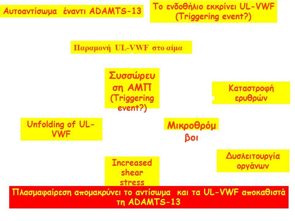 Συσσώρευ ση ΑΜΠ (Triggering event ) Μικροθρόμ βοι Increased shear stress Unfolding of UL- VWF Καταστροφή ερυθρών Δυσλειτουργία οργάνων Αυτοαντίσωμα έναντι ADAMTS-13 Παραμονή UL-VWF στο αίμα Πλασμαφαίρεση απομακρύνει το αντίσωμα και τα UL-VWF αποκαθιστά τη ADAMTS-13 Το ενδοθήλιο εκκρίνει UL-VWF (Triggering event )