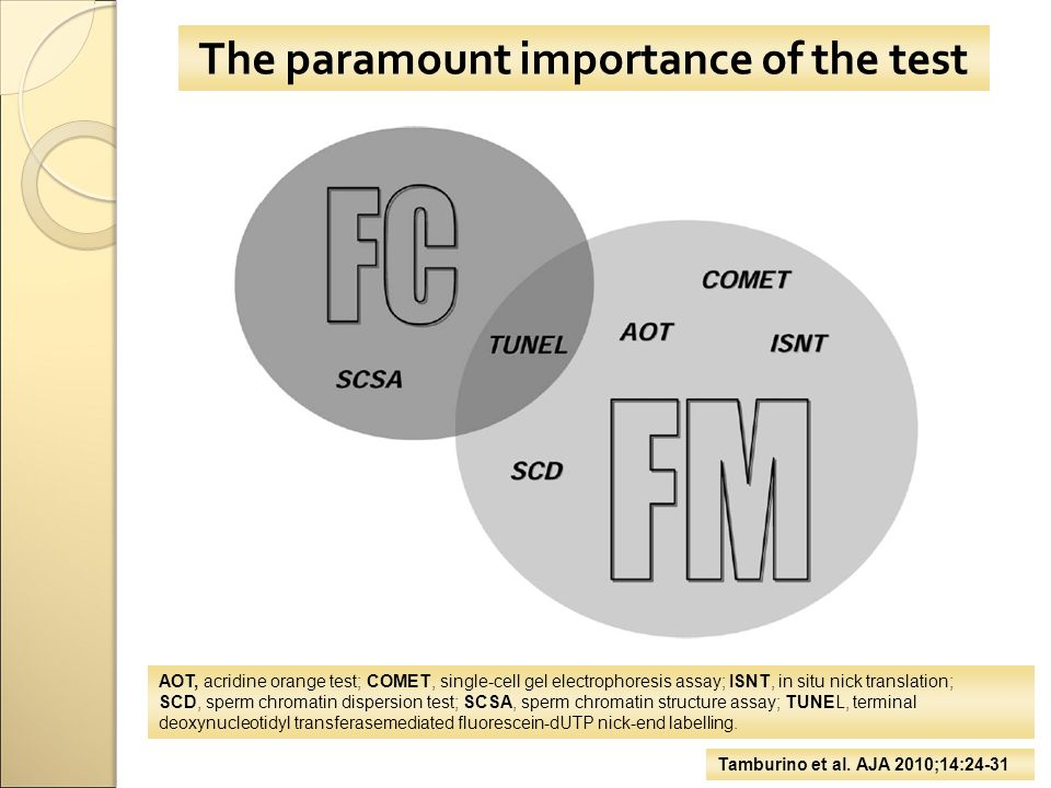 The paramount importance of the test Tamburino et al.