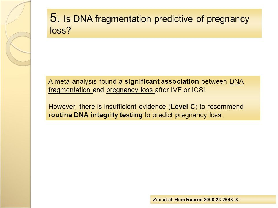 5. Is DNA fragmentation predictive of pregnancy loss? A meta-analysis found a significant association between DNA fragmentation and pregnancy loss aft
